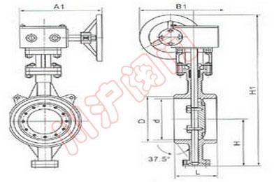 手动焊接蝶阀d63h图片